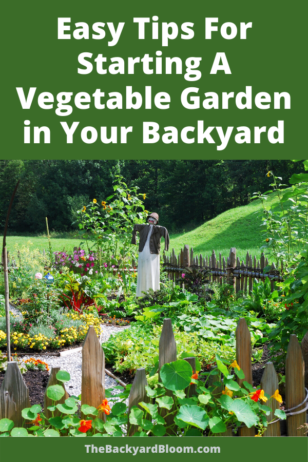 Easy Tips For Starting A Vegetable Garden in Your Backyard